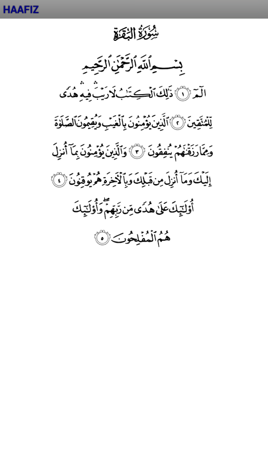 Quran Memorization (Hafiz)- screenshot