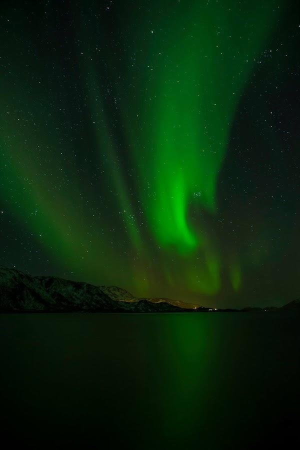 Tromso - Aurora Borealis by Mauricio Soares - Landscapes Starscapes