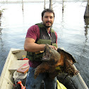 Alligator Snapping Turtle (Rory Calhoun)