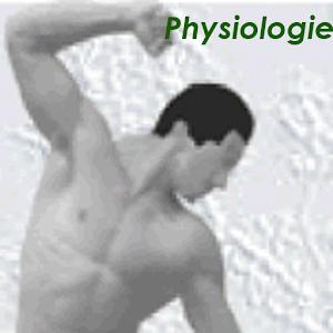 Physiokompendium Physiologie