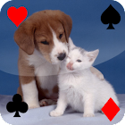 Baby Animal Solitaire icon