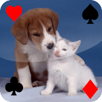 Baby Animal Solitaire Apk