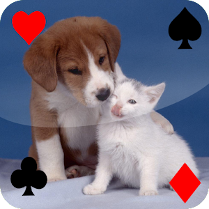 Baby Animal Solitaire for PC and MAC