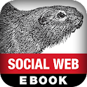 Mining the Social Web logo