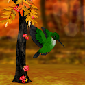 My Hummingbirds HD LWP icon