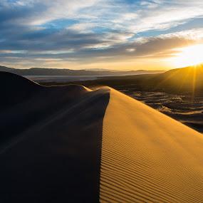 Sand Strom by Mike Lindberg - Landscapes Deserts ( wind, sand, desert, sand dunes, sunset, nevada, sunstar, high desert, great basin )