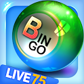 Bingo City Live 75+FREE slots icon