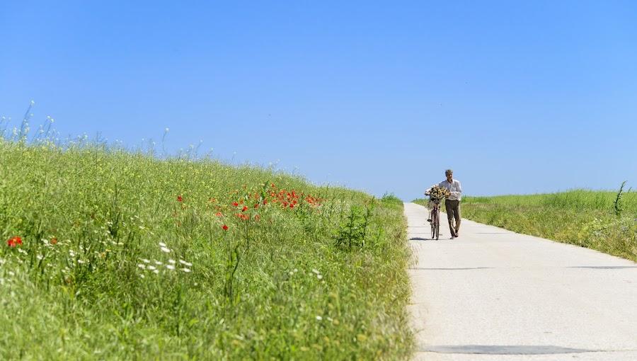 Long Ride in Mid-day Heat by Andreea Alexe - People Street & Candids ( field, narrow, bike, blue, green, long, man,  )