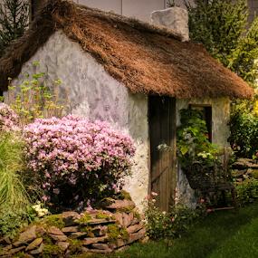 Cozy Cottage by Dave Dabour - Buildings & Architecture Other Exteriors ( cottage, philadelphia flower show 2015, flowers, shrubs,  )