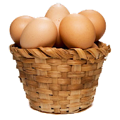 Egg Catcher Game Free