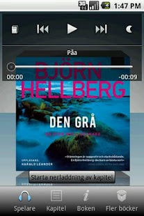Den grå - screenshot thumbnail