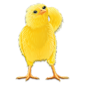 APK App Talking Chicken for BB, BlackBerry