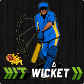 Hit Wicket Cricket 2017 - Indian League Game