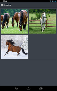 Horse Wallpapers - screenshot thumbnail