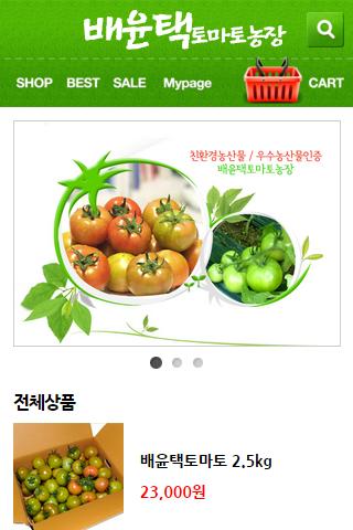 배윤택 토마토 농장 대저 친환경 무농약 우수농산물