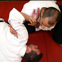 A step to Aikido 1 move DEMO logo