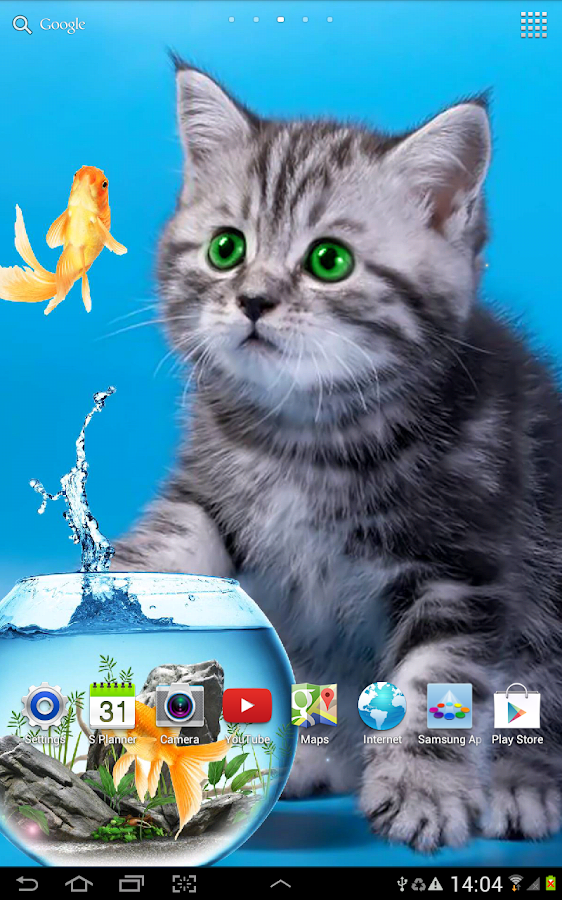Cat Live Wallpaper Oscargilaberte Com