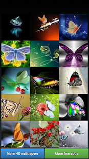 Butterflies HD Wallpapers- screenshot thumbnail