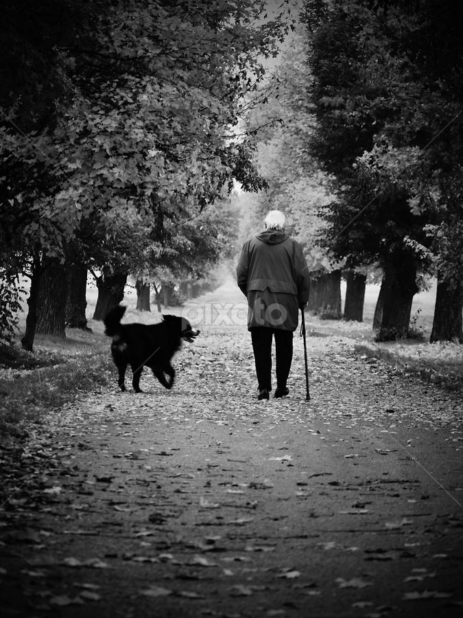 by Irena Brozova - Black & White Landscapes