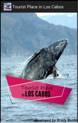 Cabo Tourist App Brady Bunte