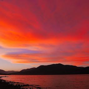 Atardecer en el lago by Daniel Sapag - Nature Up Close Water ( lago, agua, nubes, verano, atardecer )