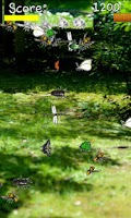Screenshot of Insect-collecting