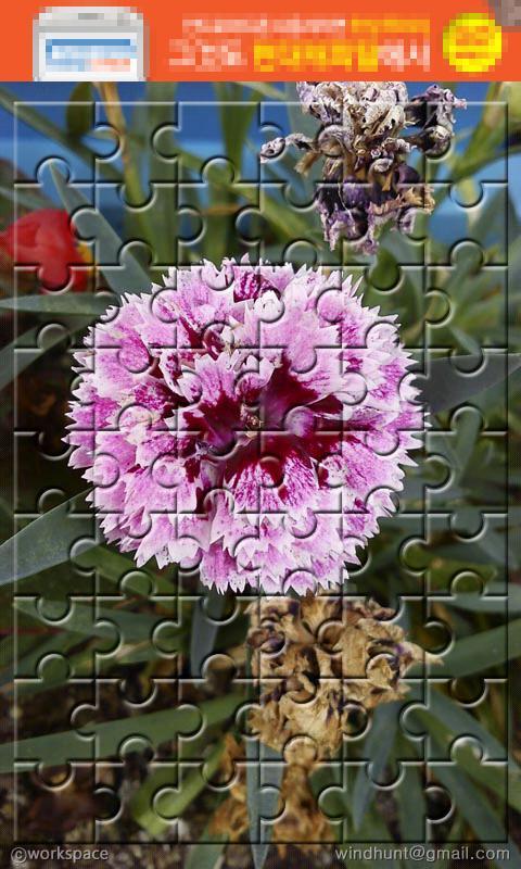 Jigsaw Puzzle- screenshot