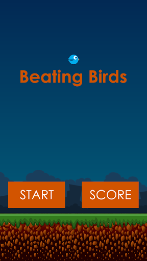 Beating Birds