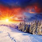 Winter Live Wallpaper HD FREE icon