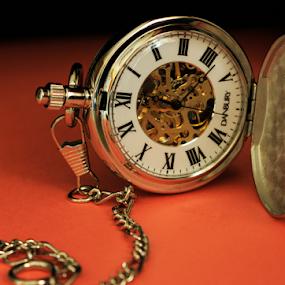 Pocket Watch by Rick Touhey - Artistic Objects Jewelry ( pocket watch, danbury, watch, clothing accessories, jewelry, watch gears,  )