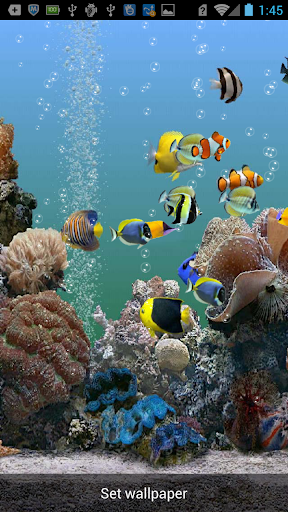 Underwater Live Lock