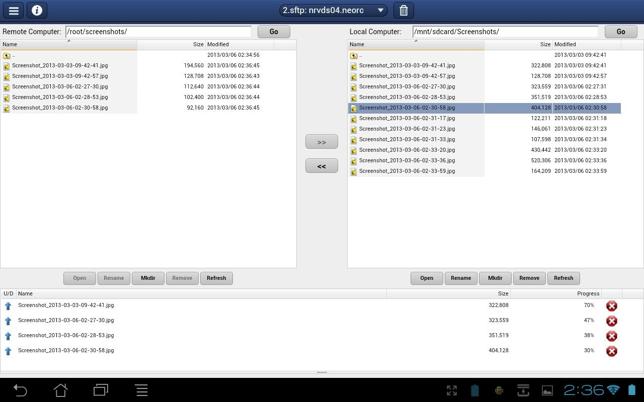 NeoRouter Remote Access (Pro)- screenshot
