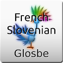 French-Slovenian Dictionary icon