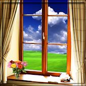 Real Windows