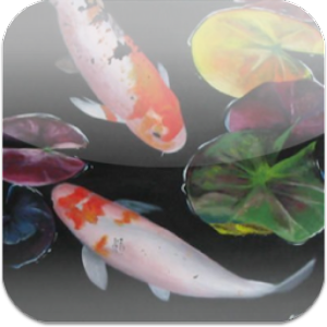 3D Koi Pond Reality Live Wallp for Android