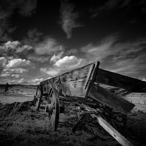 Buckboard on a Prarie by Gary Hanson - Black & White Objects & Still Life ( broken, bw, tumbleweed, prairie, buckboard, west, abandoned,  )