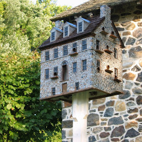Chadds Ford Society birdhouse replica by Dianne Collins - Buildings & Architecture Public & Historical
