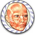 Free Speed Anatomy Quiz Free APK for Windows 8