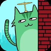 Wander Cat