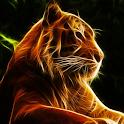 Creative HD Wallpaper 2 icon