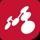 Mindomo (mind mapping) icon