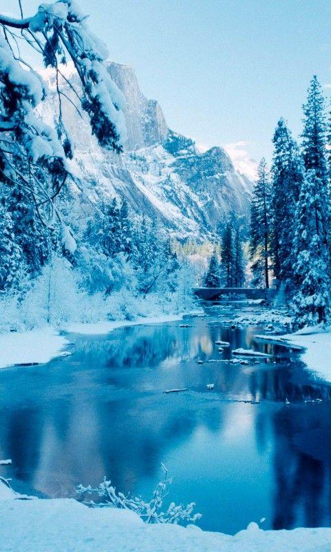 frozen live wallpaper hd