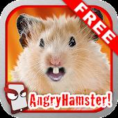 Angry Hamster Free!