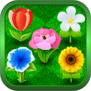 Bouquets - Blooming flower garden. Flowers game