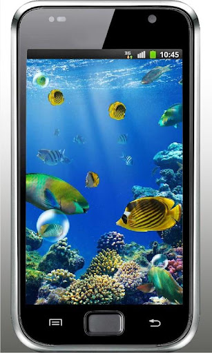 Killer Fish 3D Live wallpaper