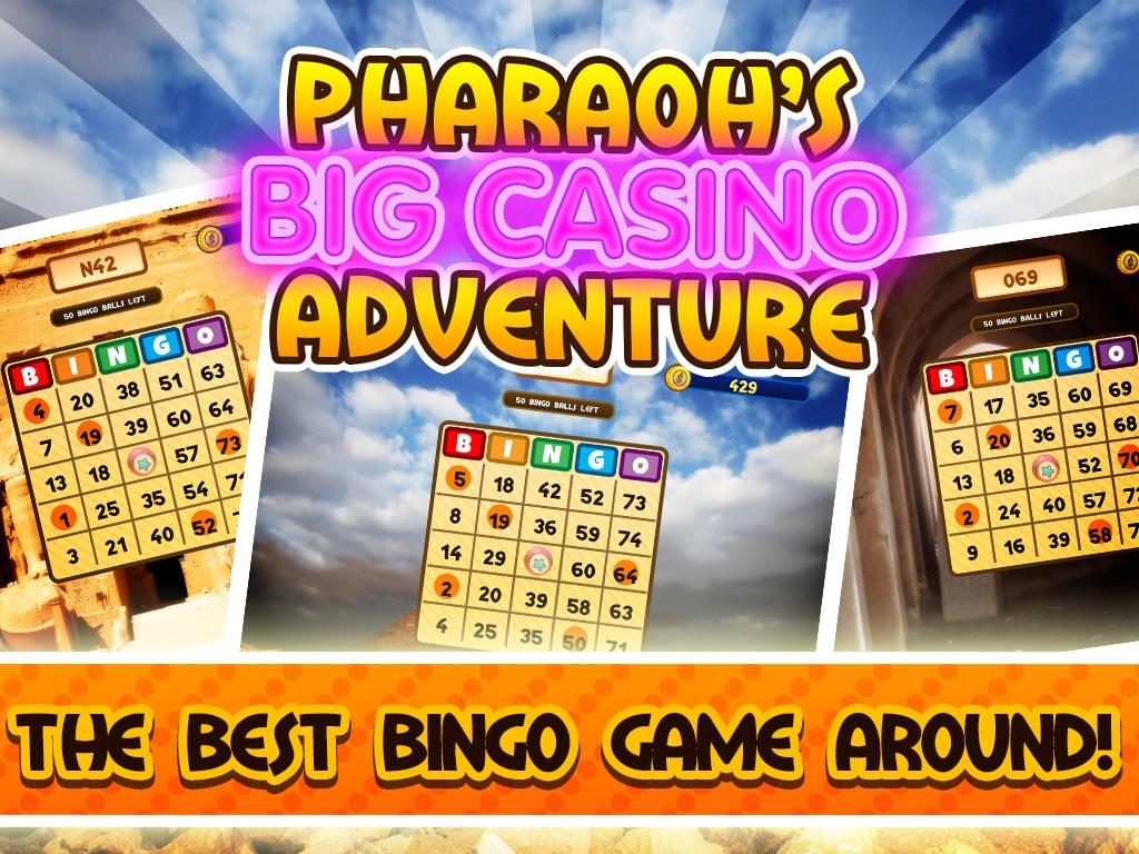 Big Win Casino Bingo Jackpot- screenshot