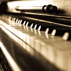 Tickled Ivory by E.g. Orren - Artistic Objects Musical Instruments ( b&w, piano, photo by ego, antique, vancouver,  )