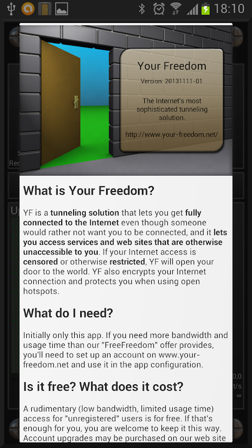 Your Freedom VPN Client - screenshot