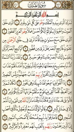 القرآن مع التفسير بدون انترنت 4.0 screenshot 256993