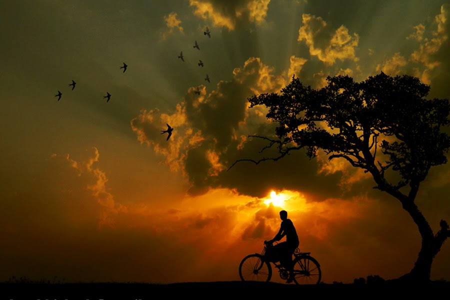 Home bound by Abhi Ghosh - People Street & Candids